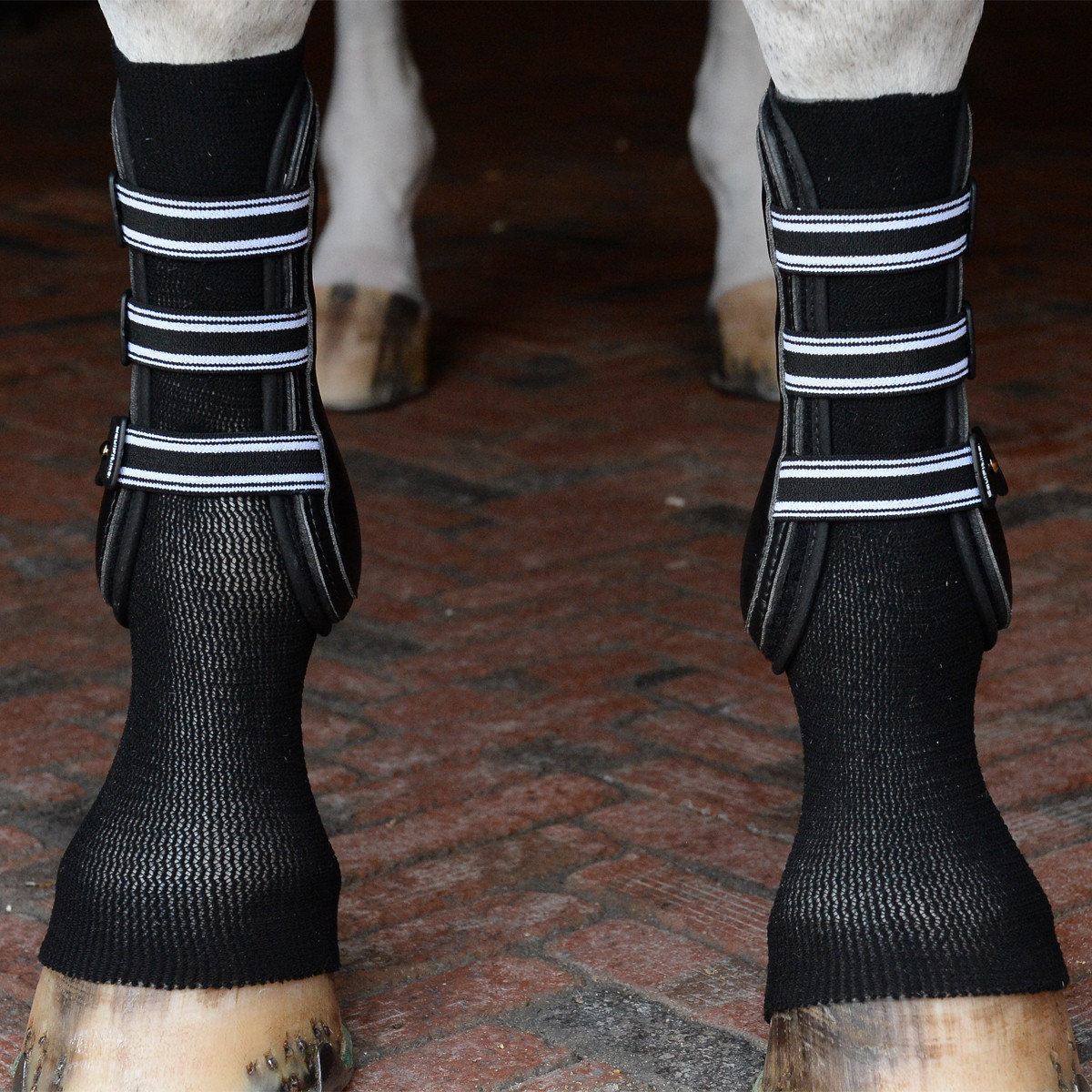 EquiFit® GelSox™ for Horses