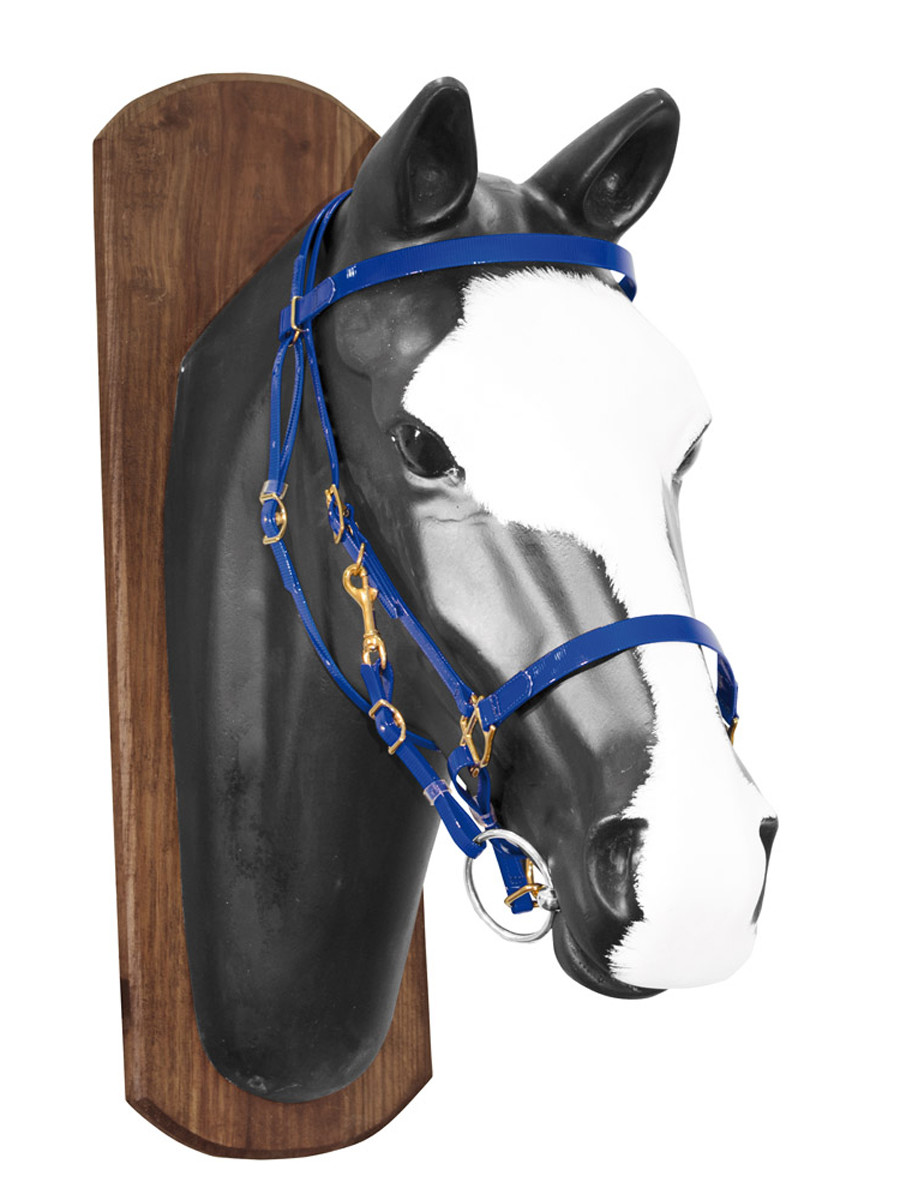 Lakota Biothane Halter-Bridle with Rubber Covered Reins