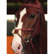 Butet Mexican Figure 8 Noseband