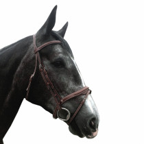 Silver Crown Comporta Headpiece With Half-Moon Flash Noseband