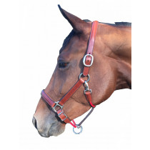 Silver Crown Classic Halter