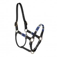 Pampeano Black Pampa Headcollar – Grey and Royal Blue