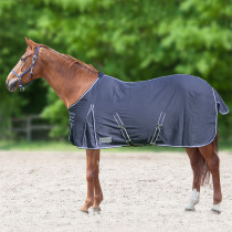 Comfort Stable and Summer Rug